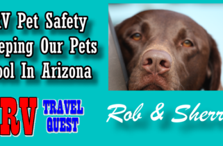 RV Travel Quest pet Safety
