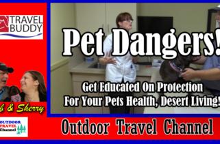 rv-travel-buddy-pet-dangers-cover