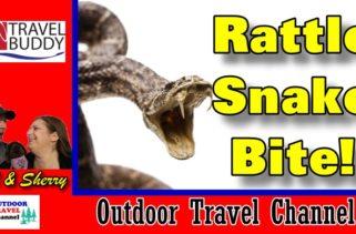 rv-travel-buddy-rattle-snake-bite-cover
