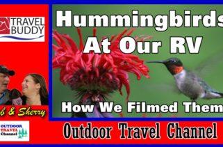 rv-travel-buddy-hummingbirds-g40-diy-cover